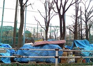 玉姫公園の一角。児童が遊ぶスペースは、奥にあるフェンスの向こう側。
