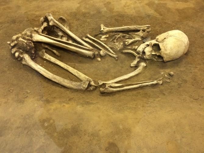 埋葬された人骨